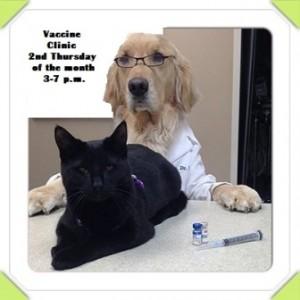 watson_and_birdie_vaccine_clinic_web
